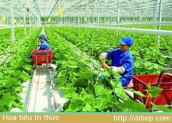 Kinh nghiệp xuất khẩu nông sản