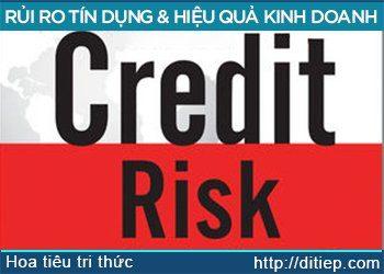 Rủi ro tín dụng và hiệu quả hoạt động ngân hàng