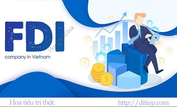 Doanh nghiệp FDI Việt Nam