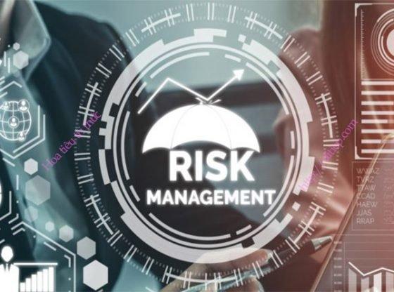 Quản trị rủi ro là gì