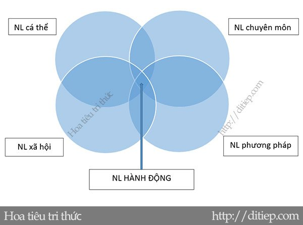 Biểu đồ minh họa cấu trúc năng lực